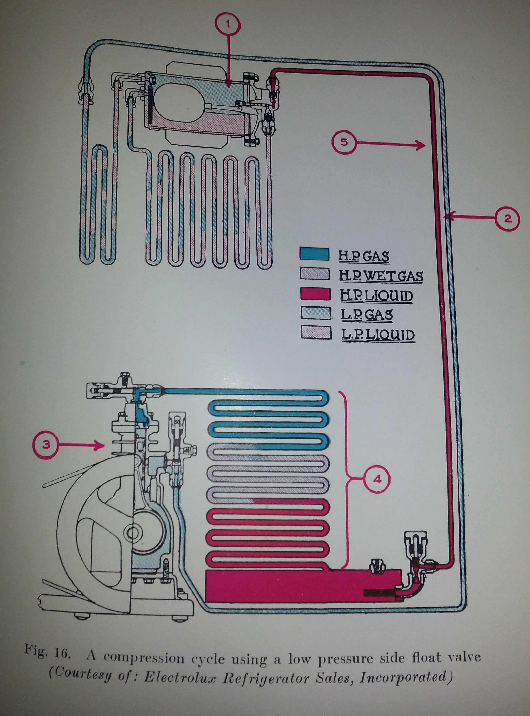 Refrigerator Diagram